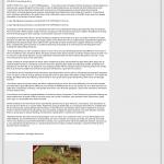 Forex Peace Army   Abundance and Wealth Attraction through Live Clean up – Tip in KAZT IND-7 (Phoenix/Prescott, AZ)